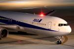 ちぃこさんが、羽田空港で撮影した全日空 767-381の航空フォト(写真)