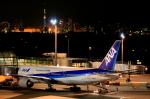 ちぃこさんが、羽田空港で撮影した全日空 777-281の航空フォト(写真)