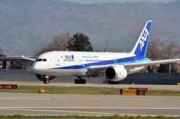 aclichiroさんが、ノーマン・Y・ミネタ・サンノゼ国際空港で撮影した全日空 787-8 Dreamlinerの航空フォト(飛行機 写真・画像)