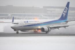 tomoMTさんが、新千歳空港で撮影した全日空 737-881の航空フォト(飛行機 写真・画像)