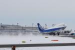 Automarkさんが、新千歳空港で撮影した全日空 747-481(D)の航空フォト(写真)
