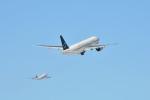 c59さんが、新千歳空港で撮影した全日空 777-281の航空フォト(飛行機 写真・画像)