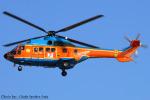 Chofu Spotter Ariaさんが、東京ヘリポートで撮影した新日本ヘリコプター AS332L1 Super Pumaの航空フォト(写真)