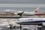 Koenig117さんが、羽田空港で撮影したJALエクスプレス 737-846の航空フォト(写真)