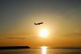 ぬるりんさんが、松山空港で撮影した全日空 777-281の航空フォト(写真)