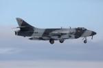 take_2014さんが、厚木飛行場で撮影したATAC Hunter F.58の航空フォト(写真)