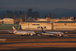 アイスコーヒーさんが、羽田空港で撮影した日本航空 787-8 Dreamlinerの航空フォト(飛行機 写真・画像)