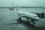 アイスコーヒーさんが、台湾桃園国際空港で撮影したエバー航空 A321-211の航空フォト(写真)