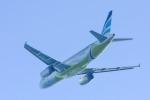 パンダさんが、関西国際空港で撮影したエアプサン A320-232の航空フォト(飛行機 写真・画像)