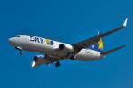 パンダさんが、成田国際空港で撮影したスカイマーク 737-86Nの航空フォト(写真)