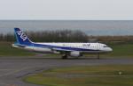 もぐ3さんが、新潟空港で撮影した全日空 A320-211の航空フォト(写真)