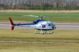 もぐ3さんが、新潟空港で撮影した中日新聞社 AS350B Ecureuilの航空フォト(飛行機 写真・画像)