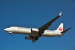 パンダさんが、成田国際空港で撮影した日本航空 737-846の航空フォト(写真)