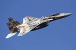 ゆーぱろさんが、茨城空港で撮影した航空自衛隊 F-15J Eagleの航空フォト(写真)