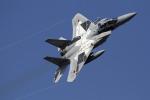 ゆーぱろさんが、茨城空港で撮影した航空自衛隊 F-15DJ Eagleの航空フォト(写真)