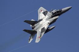 ゆーぱろさんが、茨城空港で撮影した航空自衛隊 F-15DJ Eagleの航空フォト(飛行機 写真・画像)