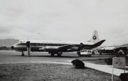 TKOさんが、伊丹空港で撮影した全日空 828 Viscountの航空フォト(飛行機 写真・画像)