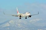 函館空港 - Hakodate Airport [HKD/RJCH]で撮影されたJALエクスプレス - JAL Express [JC/JEX]の航空機写真