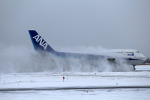 atsushi7353さんが、新千歳空港で撮影した全日空 747-481(D)の航空フォト(写真)