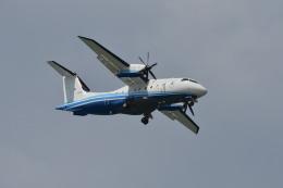 kon chanさんが、嘉手納飛行場で撮影したアメリカ空軍 C-146A Wolfhoundの航空フォト(飛行機 写真・画像)