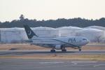 ANA744Foreverさんが、成田国際空港で撮影したパキスタン国際航空 A310-324/ETの航空フォト(写真)