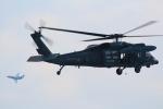 TOM310さんが、新田原基地で撮影した航空自衛隊 UH-60Jの航空フォト(写真)