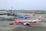 ちぃこさんが、那覇空港で撮影した日本トランスオーシャン航空 737-446の航空フォト(飛行機 写真・画像)