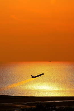 N村さんが、松山空港で撮影した全日空 737-881の航空フォト(写真)