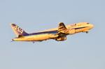 Oceanbuleさんが、羽田空港で撮影した全日空 A320-211の航空フォト(写真)