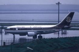 mountainhomeさんが、羽田空港で撮影したカタールアミリフライト A310-304の航空フォト(飛行機 写真・画像)