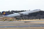 ANA744Foreverさんが、成田国際空港で撮影したルフトハンザドイツ航空 A340-642Xの航空フォト(写真)