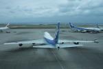 日向雪兎さんが、那覇空港で撮影した全日空 747-481(D)の航空フォト(写真)