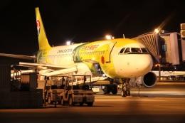 肉食獣さんが、中部国際空港で撮影した中国東方航空 A320-232の航空フォト(写真)