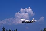Gambardierさんが、伊丹空港で撮影した日本航空 747-146の航空フォト(写真)