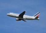 じーく。さんが、トゥールーズ・ブラニャック空港で撮影したエールフランス航空 A319-111の航空フォト(飛行機 写真・画像)
