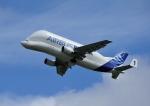 トゥールーズ・ブラニャック空港 - Toulouse-Blagnac Airport [TLS/LFBO]で撮影されたエアバス・トランスポート・インターナショナル - Airbus Transport International [BGA]の航空機写真