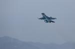 take_2014さんが、新田原基地で撮影した航空自衛隊 F-2Aの航空フォト(飛行機 写真・画像)