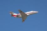 アイスコーヒーさんが、入間飛行場で撮影した航空自衛隊 U-125 (BAe-125-800FI)の航空フォト(飛行機 写真・画像)