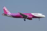 SKYLINEさんが、成田国際空港で撮影したピーチ A320-214の航空フォト(飛行機 写真・画像)