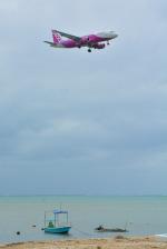 パンダさんが、那覇空港で撮影したピーチ A320-214の航空フォト(写真)
