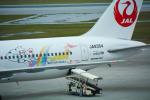 パンダさんが、那覇空港で撮影した日本航空 767-346の航空フォト(飛行機 写真・画像)