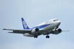 パンダさんが、那覇空港で撮影したANAウイングス 737-54Kの航空フォト(写真)