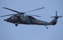 MIL26Tさんが、新潟空港で撮影した航空自衛隊 UH-60Jの航空フォト(写真)