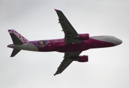 たにへいさんが、那覇空港で撮影したピーチ A320-214の航空フォト(写真)