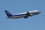 アイスコーヒーさんが、成田国際空港で撮影した全日空 A320-211の航空フォト(飛行機 写真・画像)
