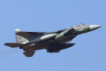 take_2014さんが、茨城空港で撮影した航空自衛隊 F-15DJ Eagleの航空フォト(写真)