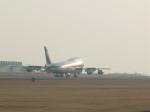 わたくんさんが、熊本空港で撮影した全日空 747-481(D)の航空フォト(写真)