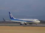 わたくんさんが、熊本空港で撮影した全日空 737-881の航空フォト(写真)