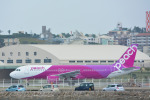 パンダさんが、那覇空港で撮影したピーチ A320-214の航空フォト(飛行機 写真・画像)