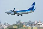 パンダさんが、那覇空港で撮影した全日空 737-781の航空フォト(飛行機 写真・画像)